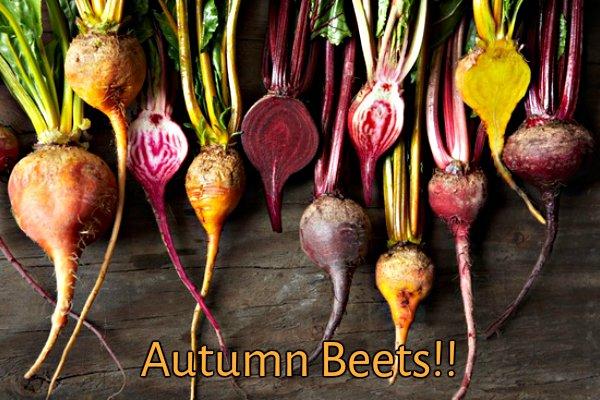 fall_beets.jpg